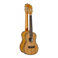UKELELE CONCERT TANGLEWOOD TWT11 NATURAL BRILLO CON FUNDA