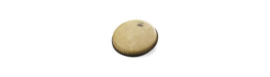 Parches Djembe